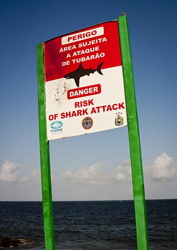 Shark attack sign