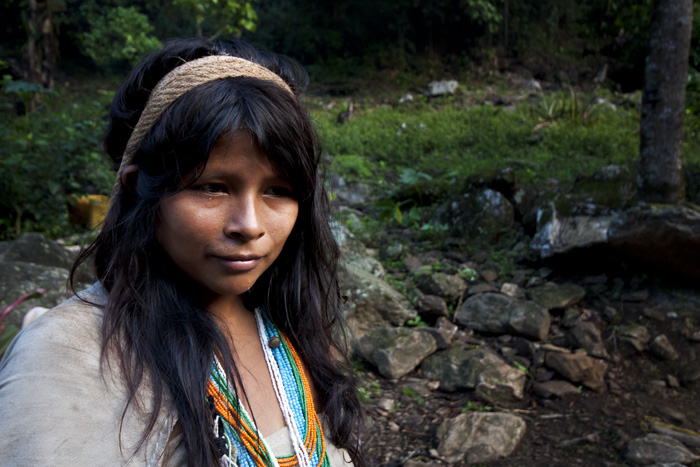 Indigena, Colombia