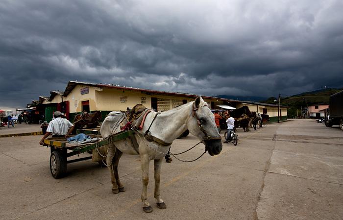 Cavallo, San Augustin, Colombia