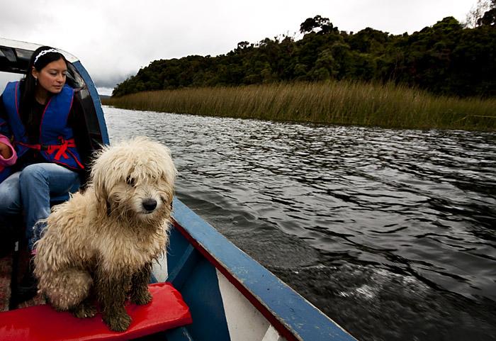 Giro in barca, lago Colombia