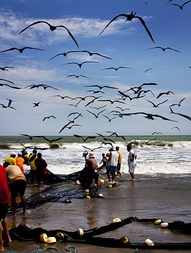 pescatori_guayaquil