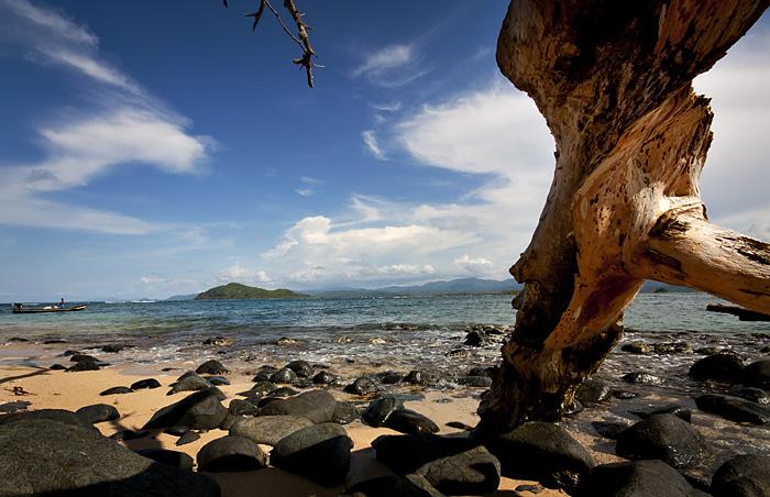 Tronco sulla spiaggia, Panama